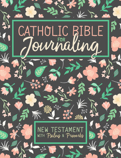 2018.9.23 DTF CBFJ New Testament Cover